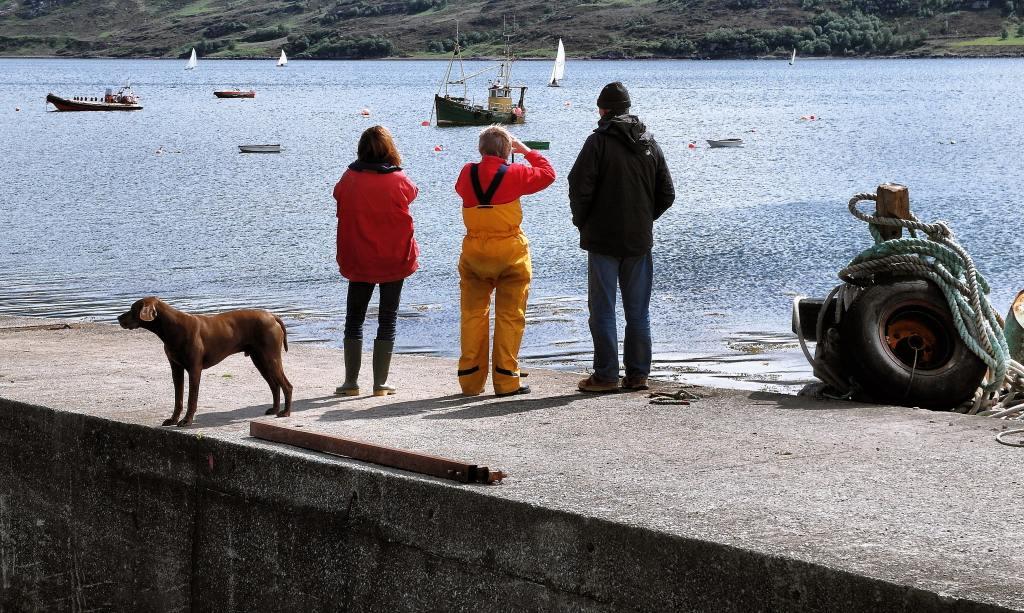 Fischer mit Hund stehen am Kai und schauen mit Fernglas auf Meer hinaus.